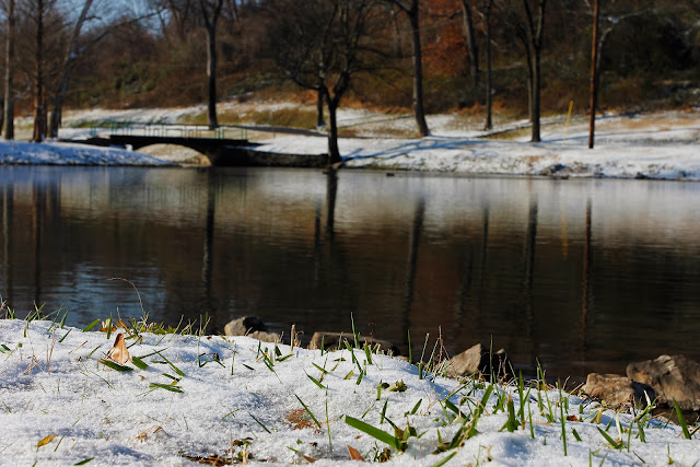 Snow Shelby Park E. Nashville