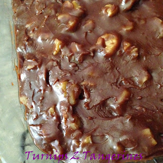 Chocolate Cake with Chocolate Walnut Fudge Frosting from Turnips 2 Tangerines