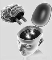 Neuro Psicopedagogia