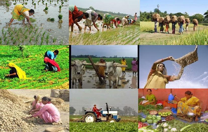 role of tourism in economic development of india pdf