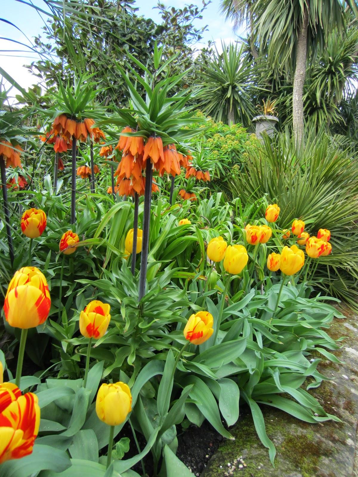 john brookes garden design pdf