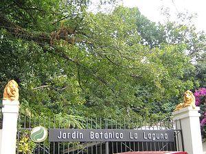Jardin botanico la laguna mas que for Jardin botanico eventos
