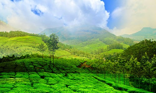 beautiful city of Wayanad
