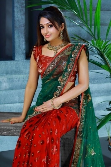 Mithra Kurian Latest Saree Stills