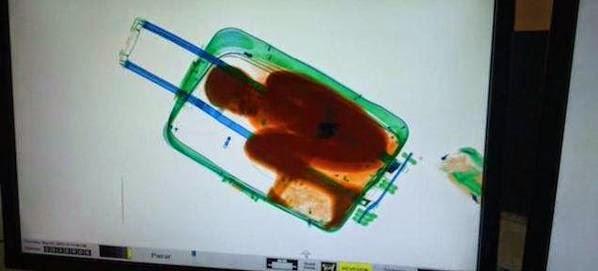من أغرب عمليات التهريب في المطارات بالعالم ..
