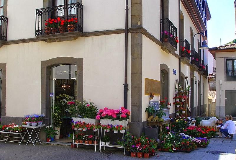 La Floristería nueva