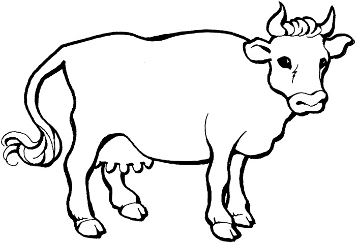 Farm Animal Cattle Cow Coloring Sheet Coloring Page Cow
