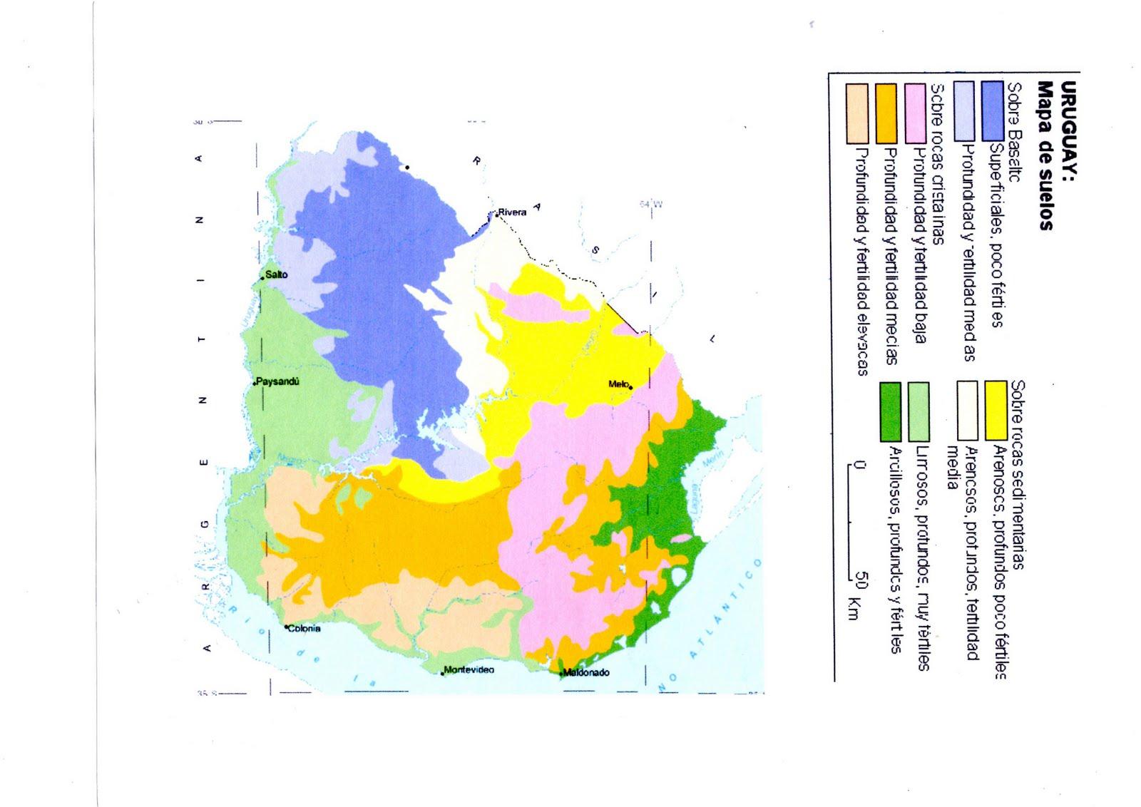 Suelos de uruguay espaciogeo2015 for Suelos y tipos de suelos