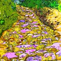 'El camí (Meritxell Valdearenas)'