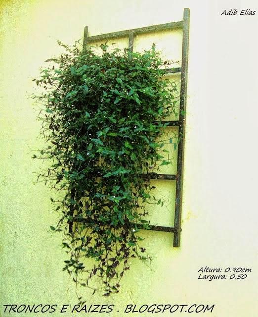 Troncos e raizes Painéis de jardins verticais