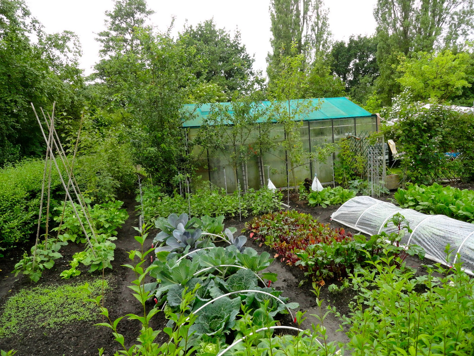 European Allotment Gardens