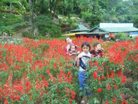 Obyek Wisata Selecta Malang