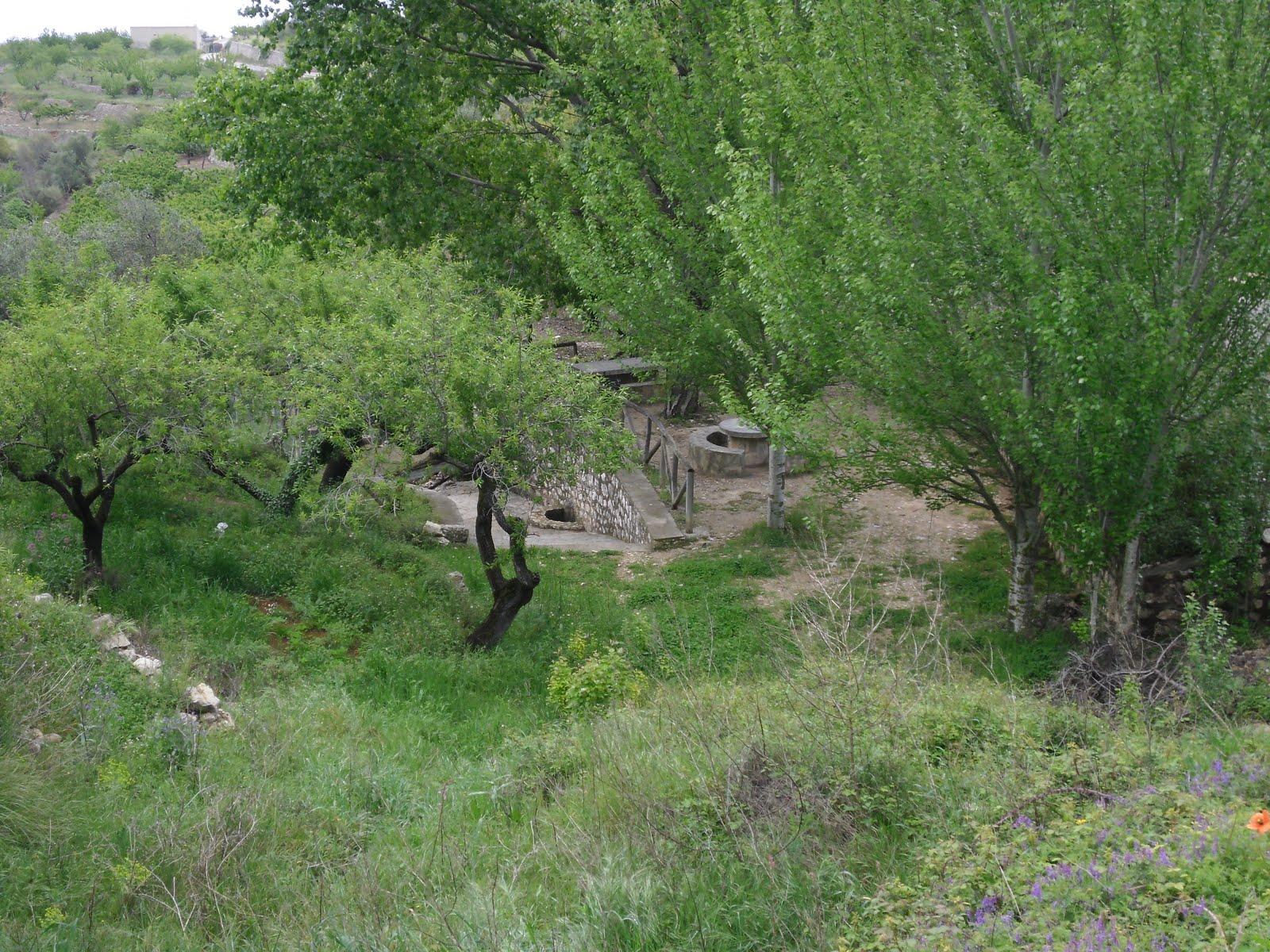 Font dels Olbis, Benimaurell
