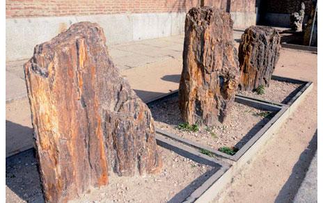 Invernablog exposici n jard n de piedras en el mncn - Tipos de piedras naturales ...