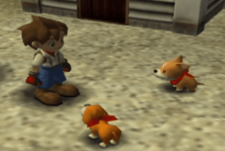 harvest moon wonderful life dogs