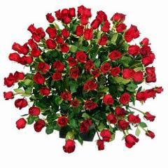 100 szál rózsa