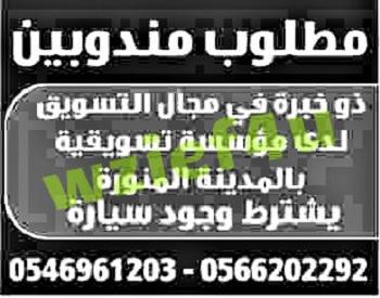 وظائف خالية جريدة الوسيلة بالمدينة المنورة 23 فبرابر 2013 | الوظائف الخالية في السعودية السبت 23/2/2013
