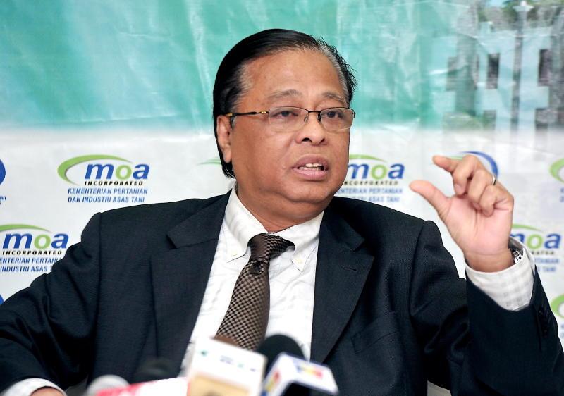 Campak Slogan 1Malaysia Ismail Sabri cetuskan perkauman kata MP