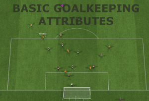 Football Manager Basic goalkeeper attributes