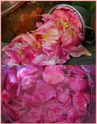Hagamos un: Tónico de rosas!!!