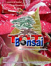DR 11 TOT Bonsai