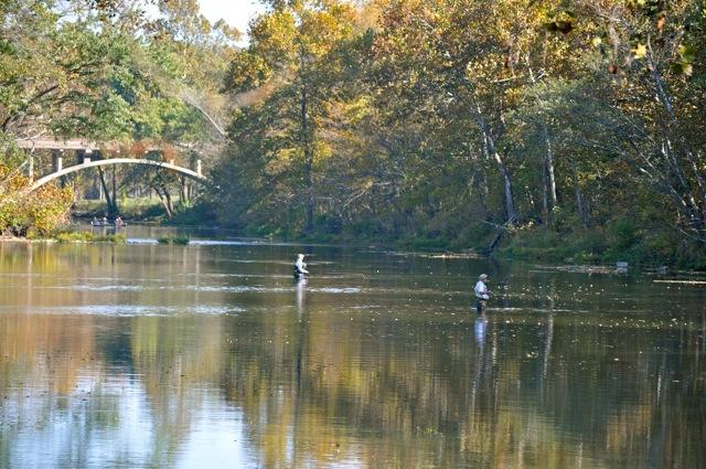 Weaver 39 s tackle store bennett spring fishing report for for Bennett springs trout fishing