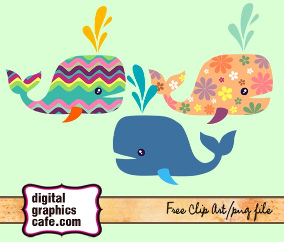 whale clipart free