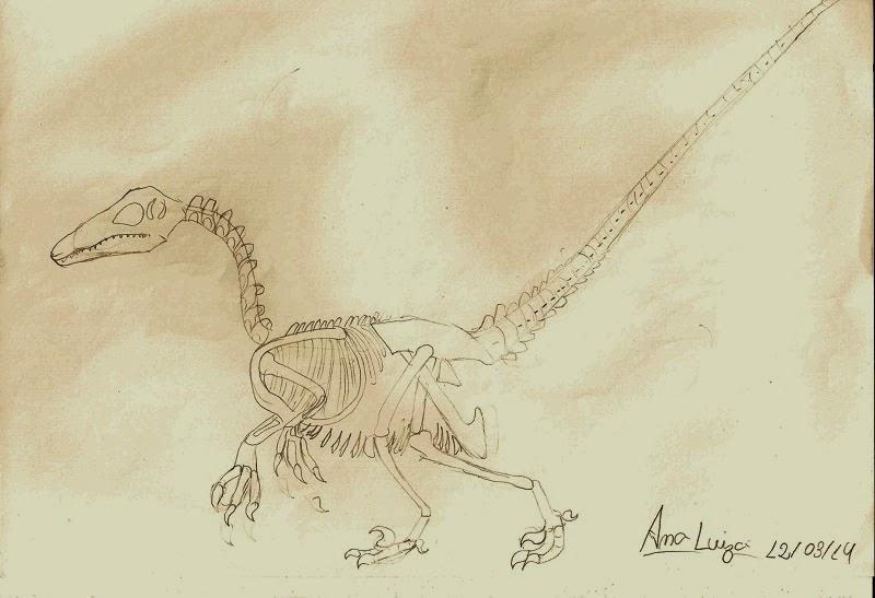 Aqui tem o desenho de um fóssil feito pela Ana Luiza
