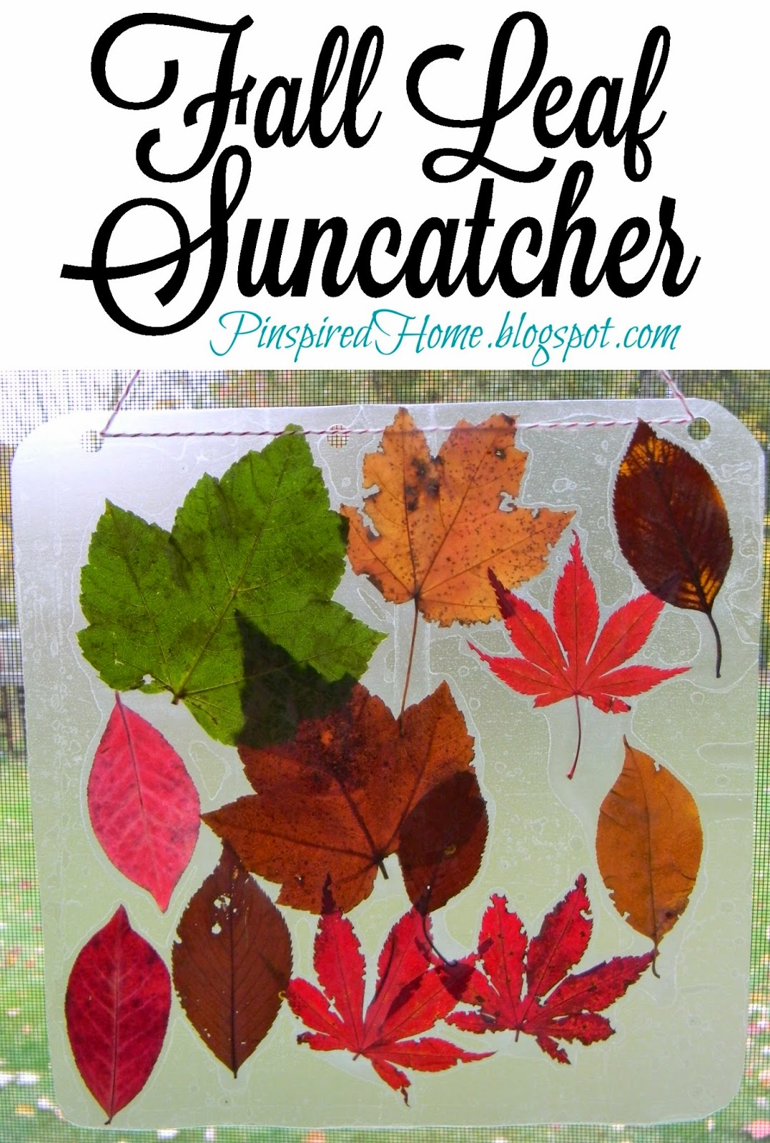 http://pinspiredhome.blogspot.com/2014/11/simple-fall-leaf-suncatchers.html