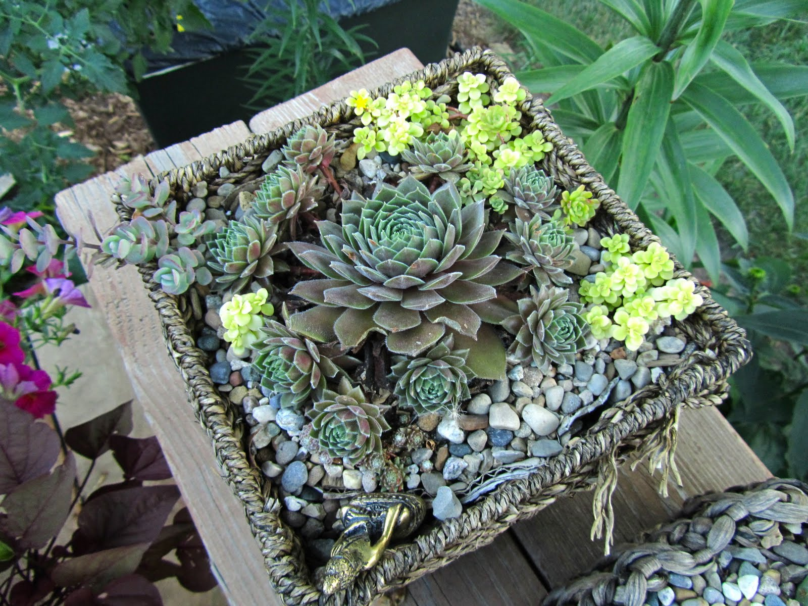 how to create a fairy garden in a container