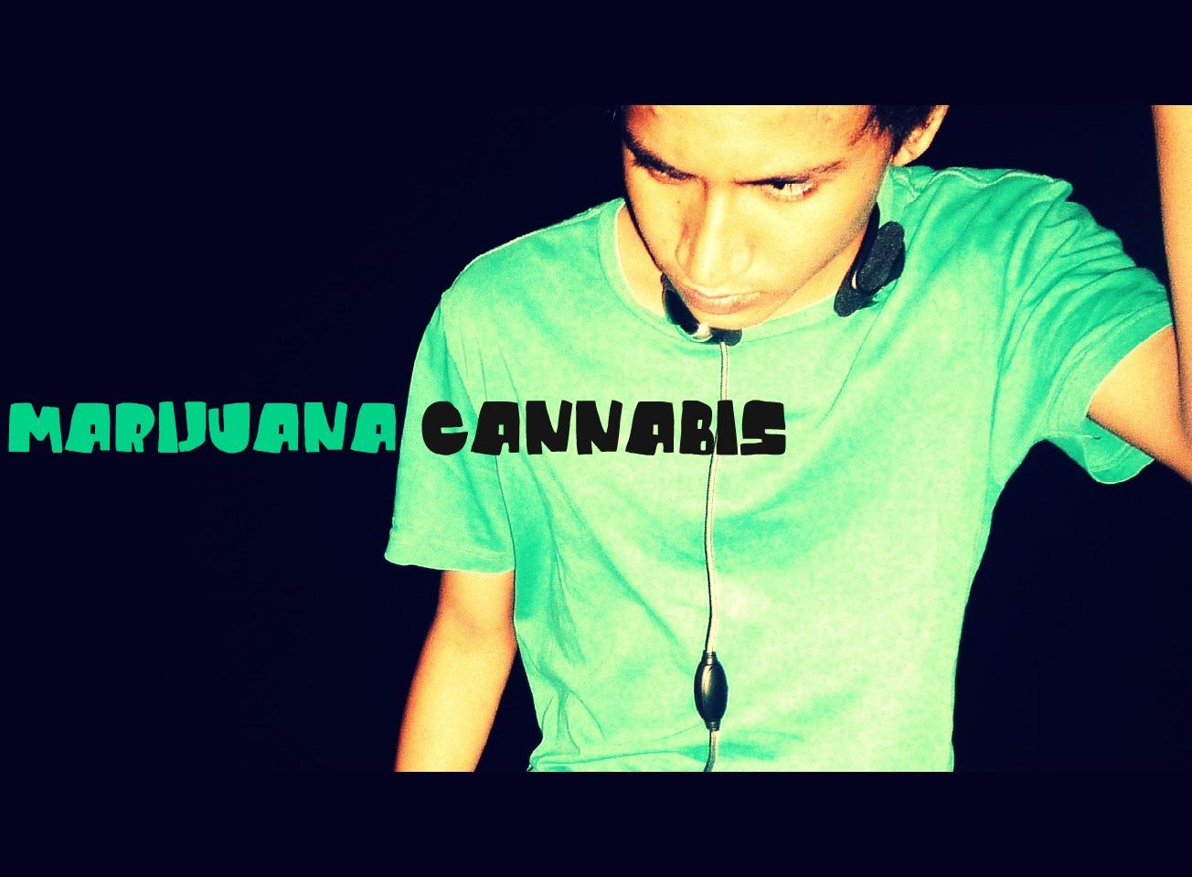 marijauna cannabis