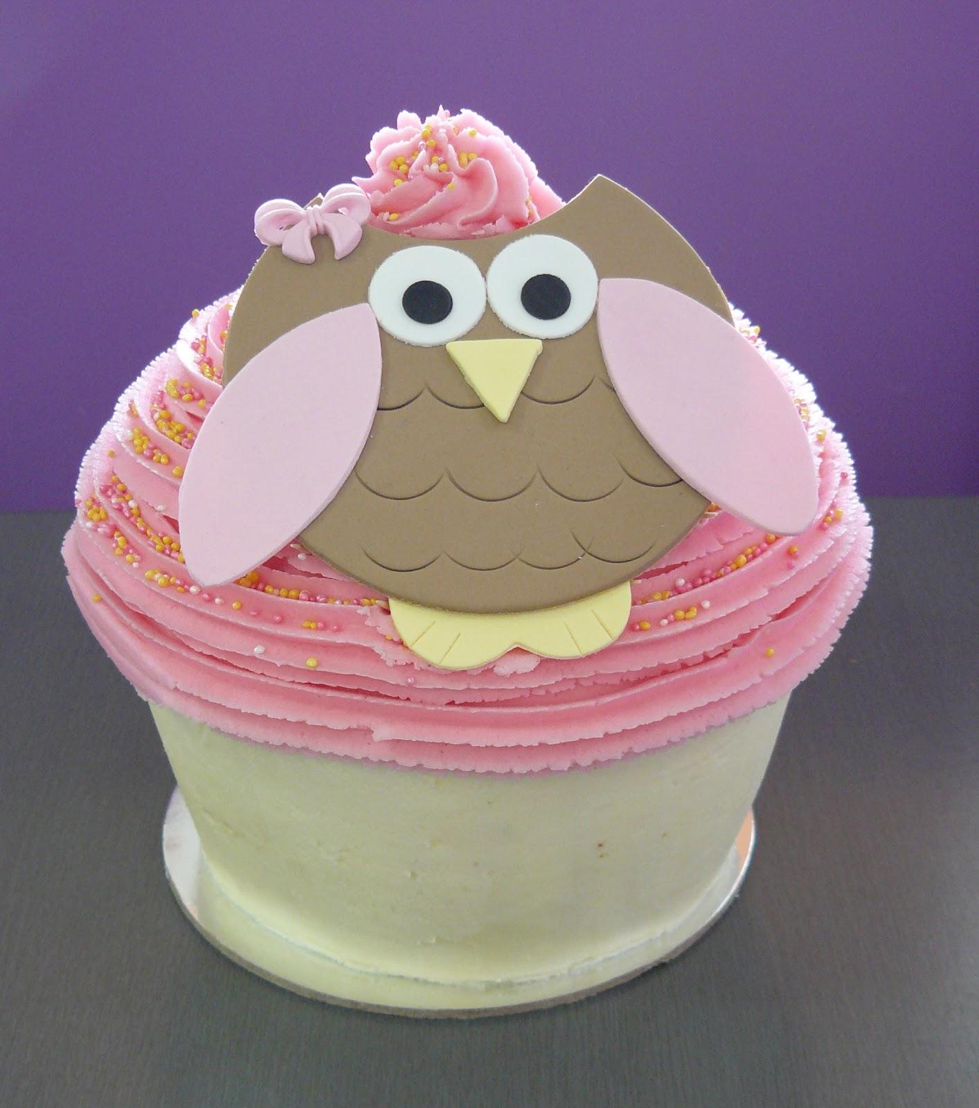 The Cup Cake Taste Brisbane Cupcakes Owl Cupcakes