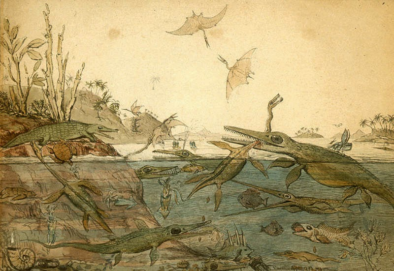 Fantastical prehistoric life on land and sea.