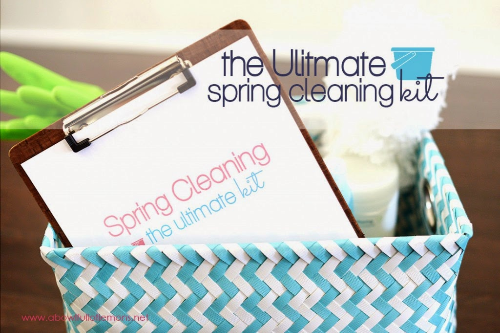 The Ultimate Spring Cleaning Kit :: OrganizingMadeFun.com