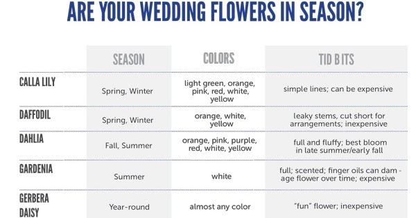 Wedology By Dejanae Events Useful Wedding Tips 2