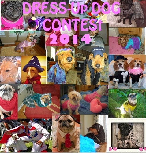 Enid's Dress Up Contest