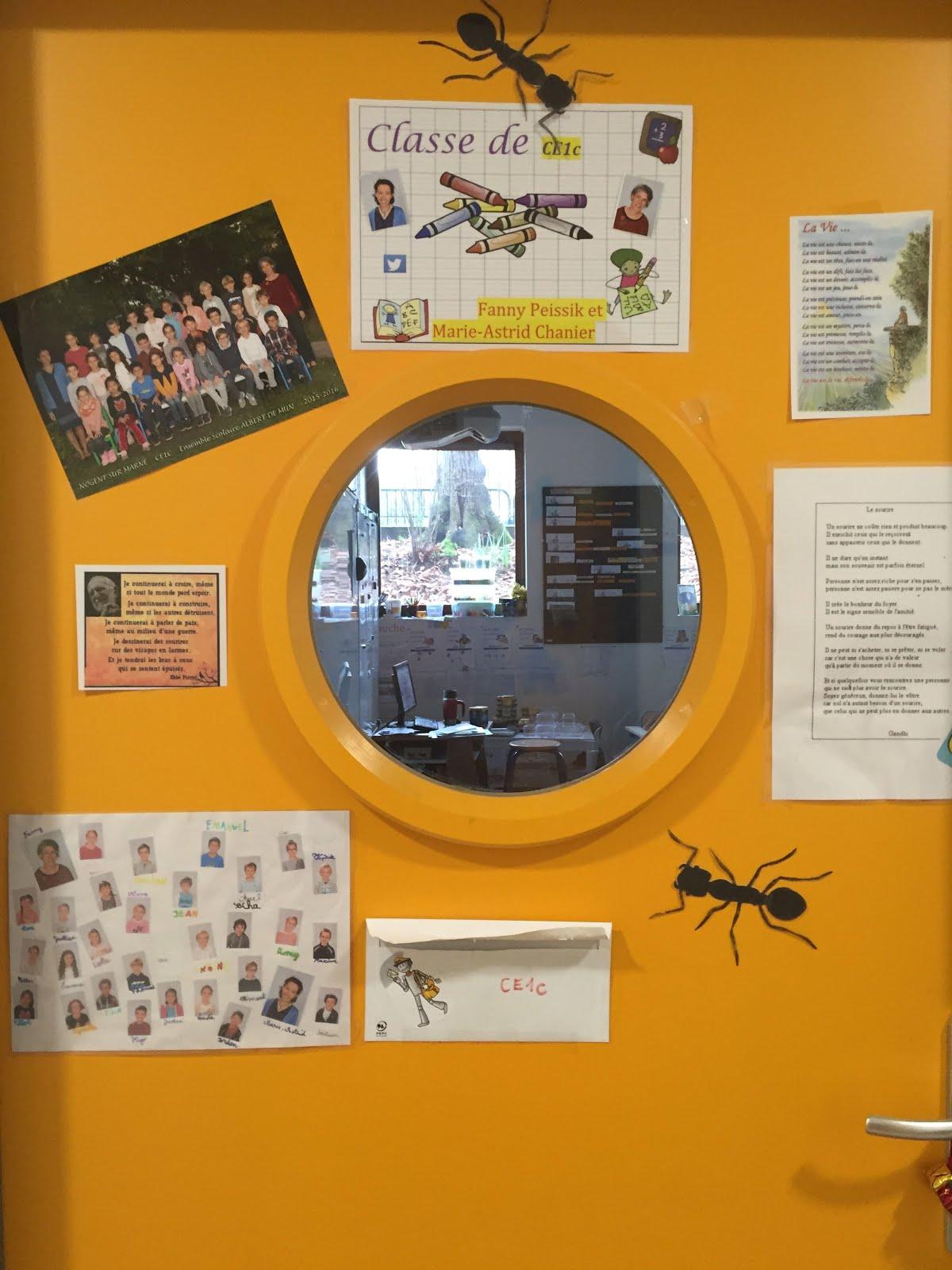 Les fourmis sur notre porte