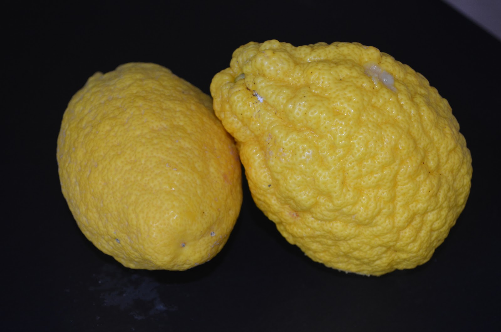 Euforia in cucina: Sorbetto al cedro con miele ai fiori d\'arancio
