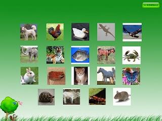 Mengenal nama dan suara hewan