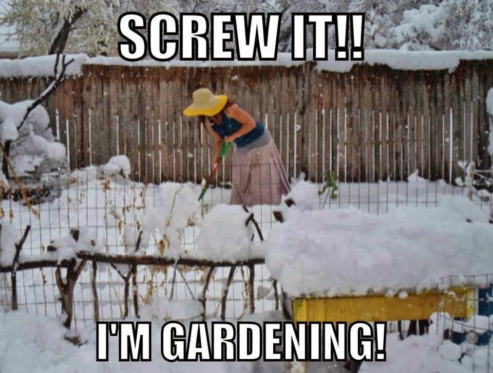 http://365.susabelle.com/blog/gardening.jpg