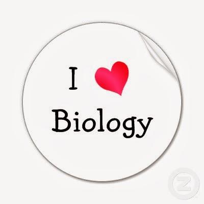 Materi Biologi Kelas 10 SMA Terlengkap