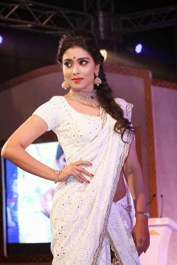 Shriya Saran Hot HD Wallpaper in White Saree Free Download