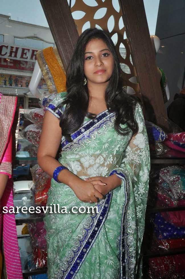 Actress Anjali In Saree