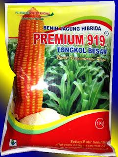 Benih Jagung - PREMIUM 919 ( New Varitas)