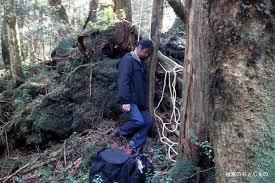 A floresta dos Suicidas