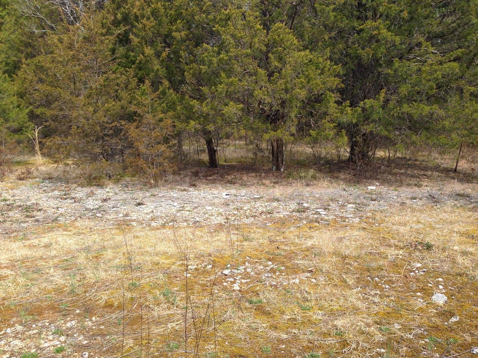 Smallworld cedars of lebanon state park for Cedars of lebanon cabins