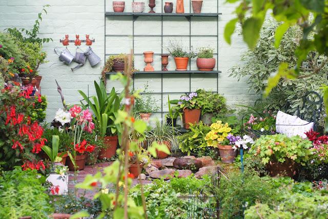 66 Square Feet Plus Small Gardens