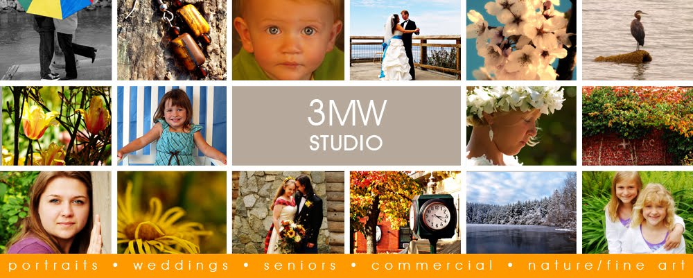 3MW Studio Blog...