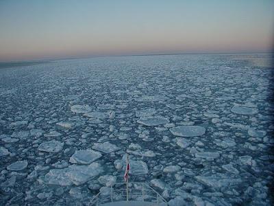 流冰 觀光 - 流冰報到 日流冰觀光船今首航