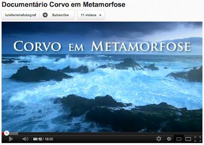 Corvo em Metamorose